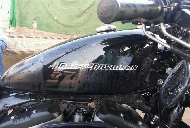Harley Davidson iron 883 for sales