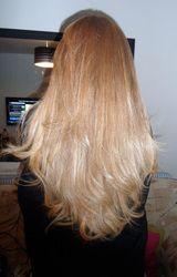 Hair Xtensions - Hair Xtensions