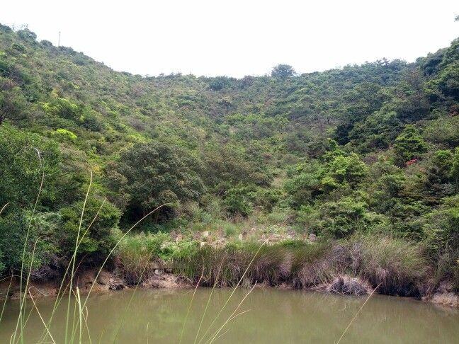 池の向こうのホトケサマ