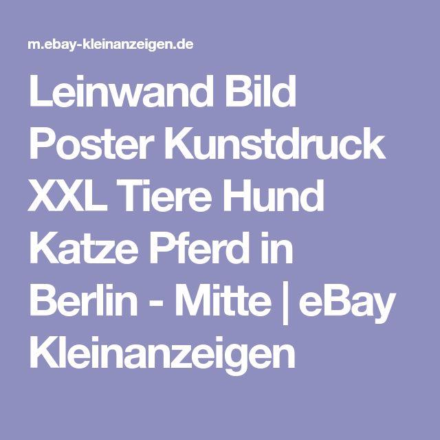 Leinwand Bild Poster Kunstdruck XXL Tiere Hund Katze Pferd in Berlin - Mitte | eBay Kleinanzeigen
