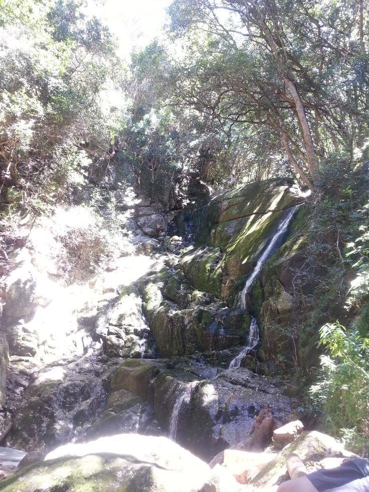 Kirstenbosch walk water fall along skull gorge