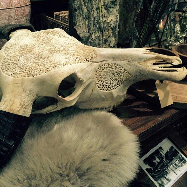 Med de lækre bløde skind og Buffalo hoveder fra MaisonMaison er du godt på vej til et Amazing boliglook www.maisonmaison.dk