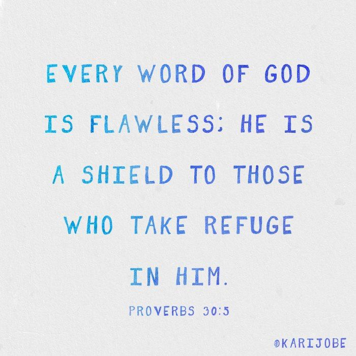 ❥ Every word of God is flawless; He is a shield to those who take refuge in Him. ~Proverbs 30:5