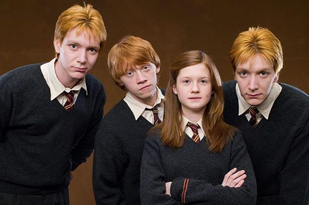 Are You More Ron Ginny Fred Or George Weasley Family Harry Potter Merch Fred And George Weasley