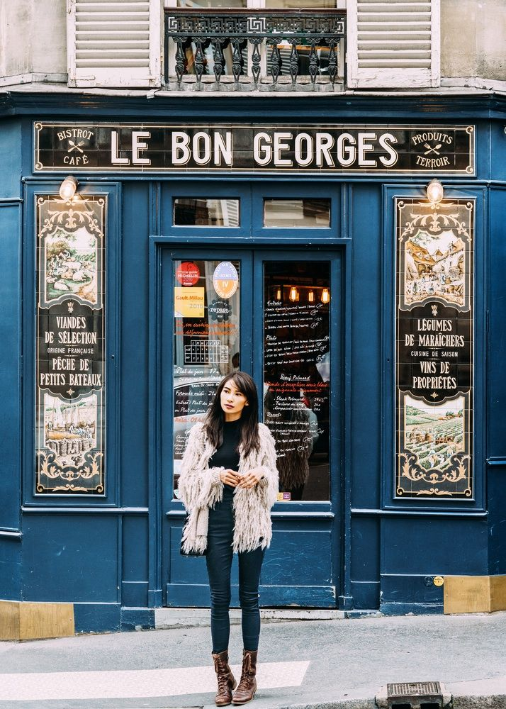 The Paris Journal : Winter Diary 2 - Nicoline's Journal