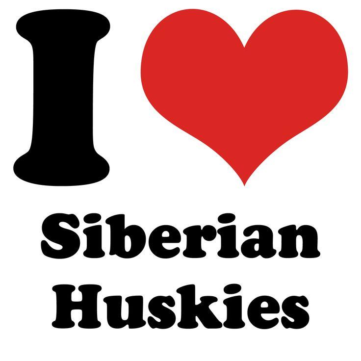 I Heart Siberian Huskies - it is a lovely dog.