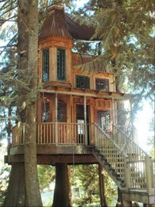 Awesome tree house with more after jump.