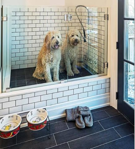 131 best beloved images on pinterest children daniel oconnell mudroom wash station the best plan when building a new house for anyone who has or plans on having big dogs dream space this dog wash will be in the solutioingenieria Choice Image