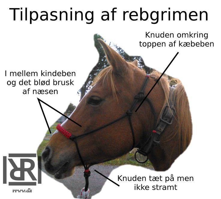 Mange er i tvivl om hvordan en rebgrime skal passe. Forhåbentlig kan dette hjælpe.  #horsemanshipgrej #horsemanship #rebgrimer