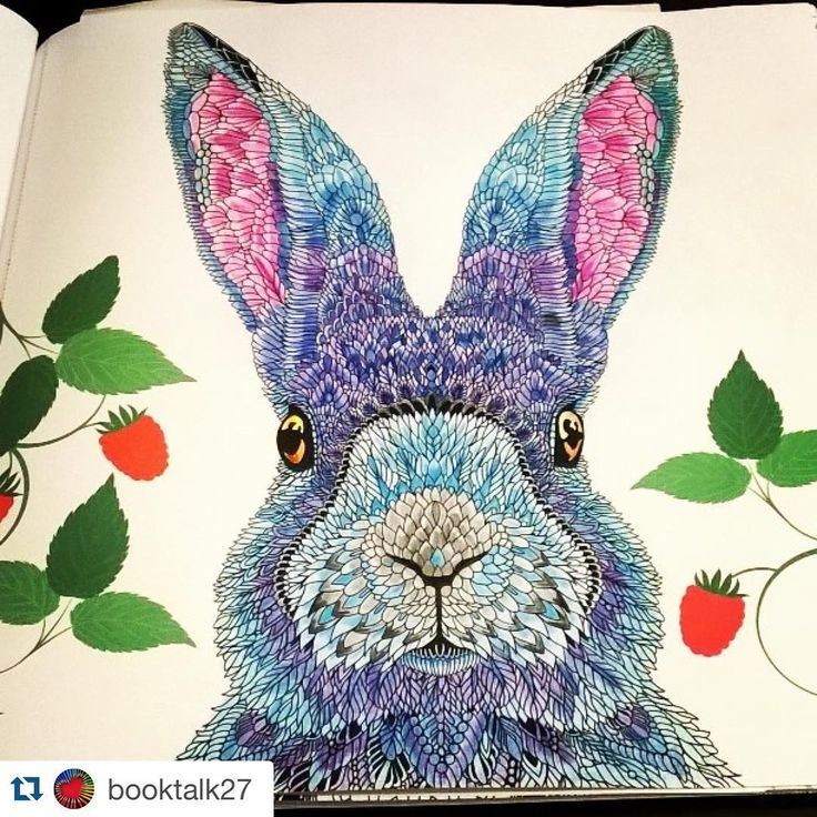 24 best Color book the menagerie images on Pinterest Coloring - copy coloring book pages of rabbits