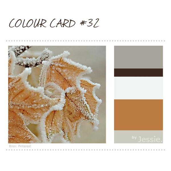 Het heeft af en toe al een beetje gevroren, dus ik vind deze #ColourCard nu wel kunnen.