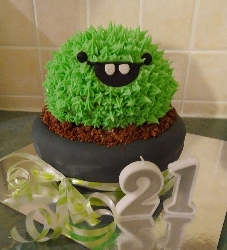 Cactus Cake made by me for our daughters 21st