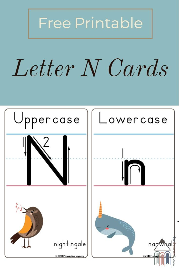 Alphabet Letter N Cards Lettering Teaching Homeschool Lettering Alphabet