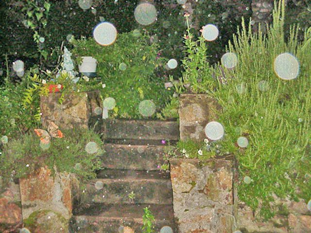 Orbs - I am on this path.