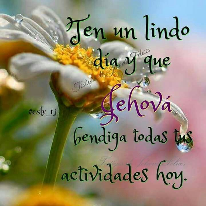 Good Morning Aunt In Spanish : Best jehovah s witnesses images on pinterest