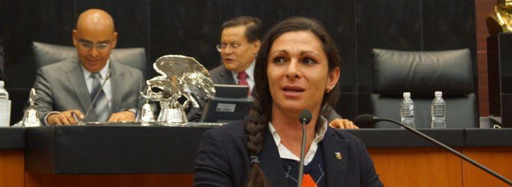 Dominio Ciudadano | Apoyar a ciudadanos que con videos denuncien actos de corrupción: Guevara