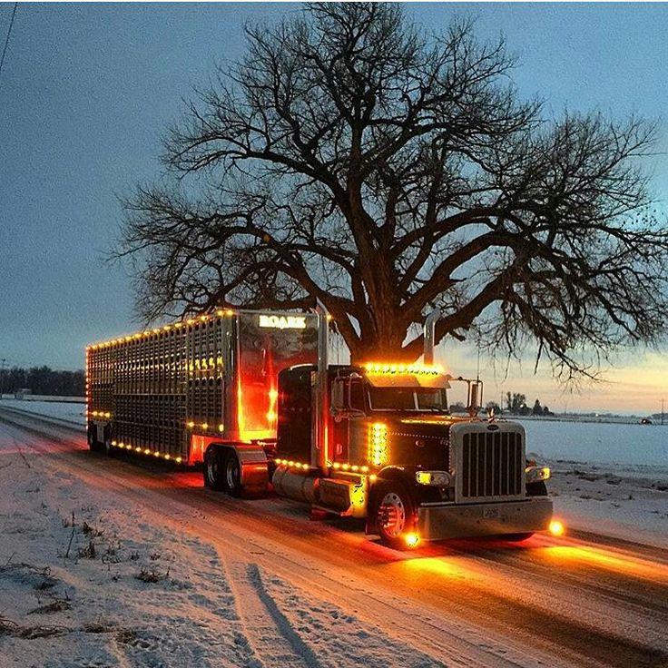 Peterbilt custom 379 bull hauler