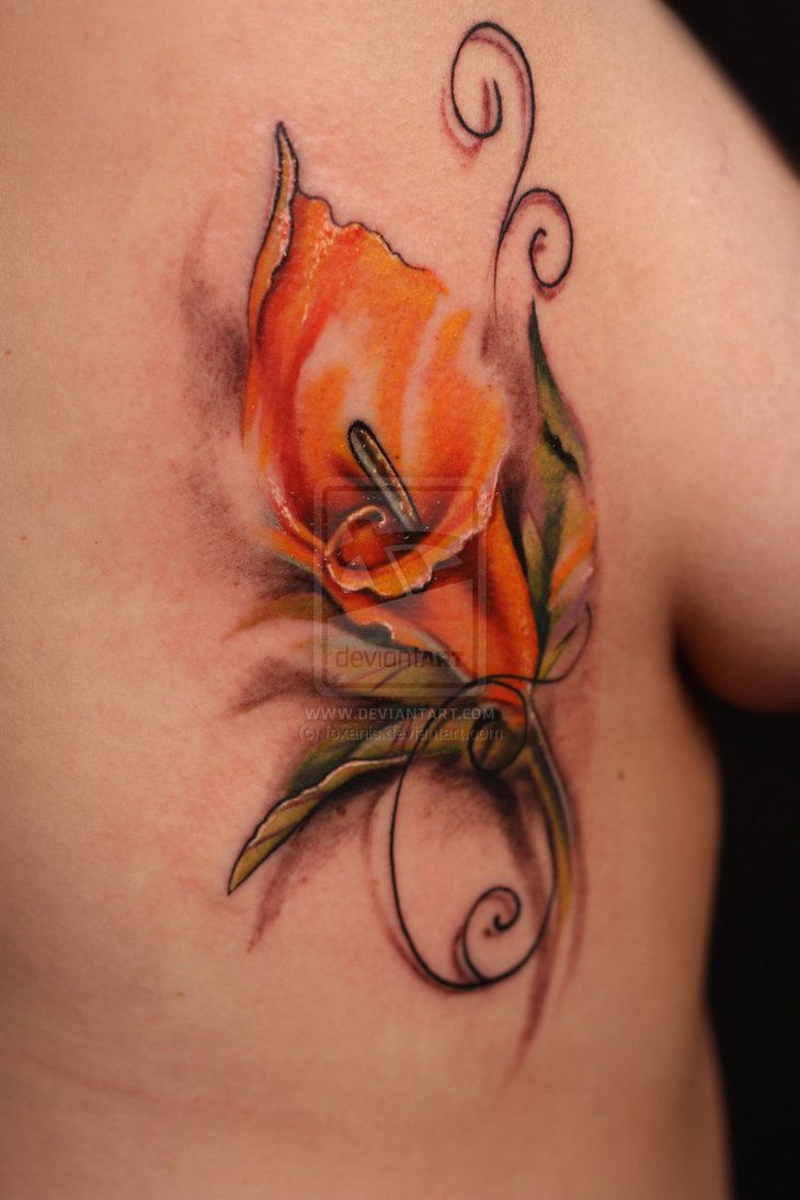 Google Image Result for http://th05.deviantart.net/fs71/PRE/i/2012/152/a/3/calla_lily_by_foxanic-d51vo5m.jpg