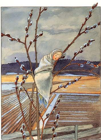 Willow Baby by Elsa Beskow || (11 February 1874, Stockholm – 30 June 1953) was a Swedish author and illustrator of childrens books.