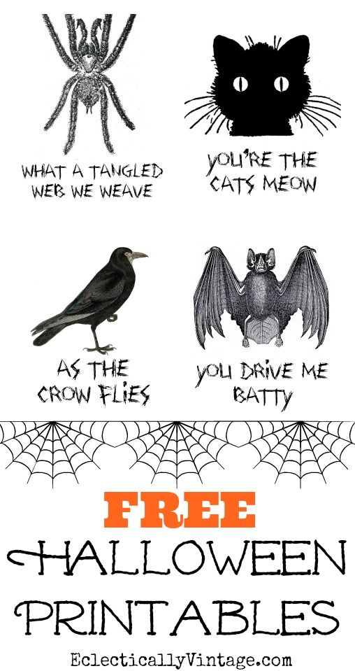 Four fun and FREE Halloween printables - pop them in frames for quick and easy decorating! eclecticallyvintage.com
