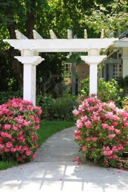 299 Best Landscaping Pacific Northwest Images On Pinterest