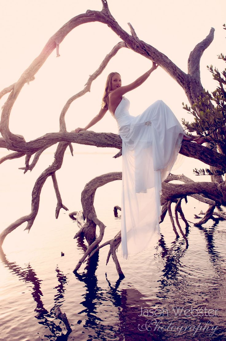 Driftwood, sunset, whimsical, fairy tale, romantic trash the dress, jason webster photography