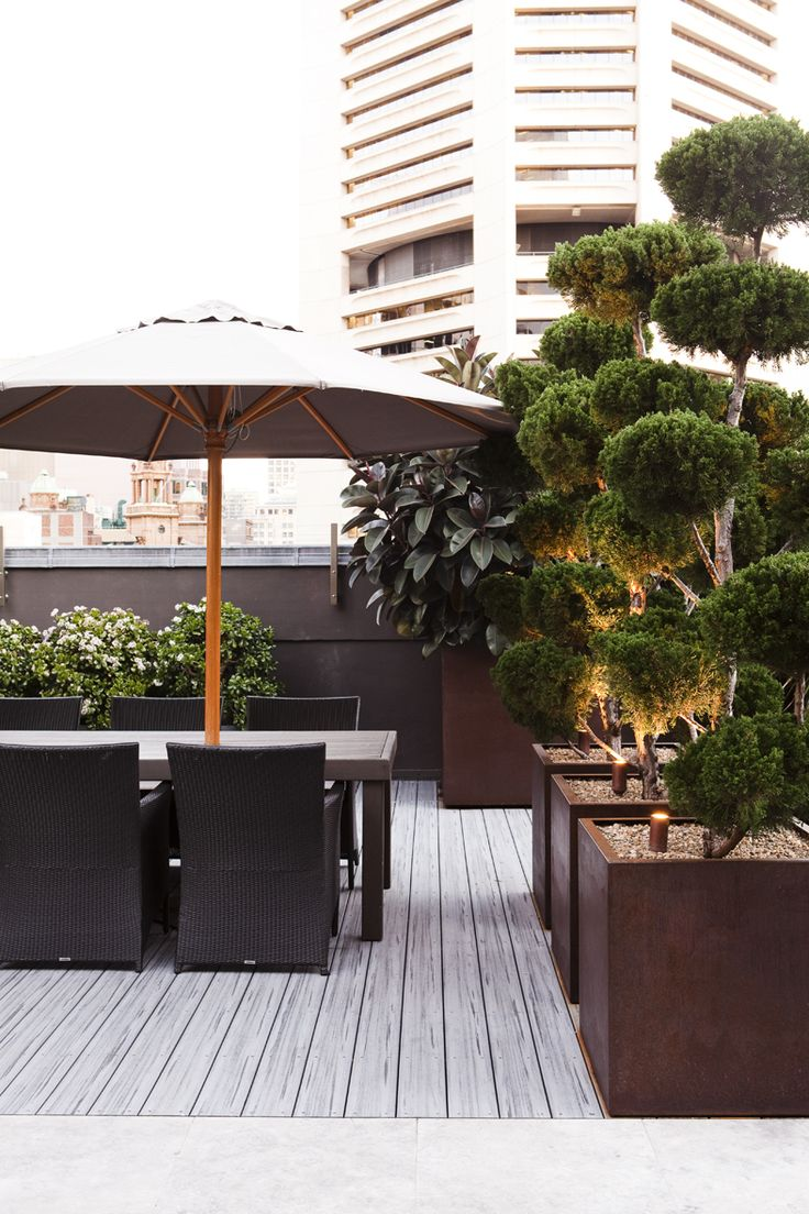9 best city 1 images on pinterest decks pots and jars for Dream roof