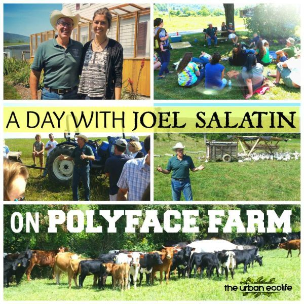 A day with Joel Salatin on Polyface Farm | The Urban Ecolife