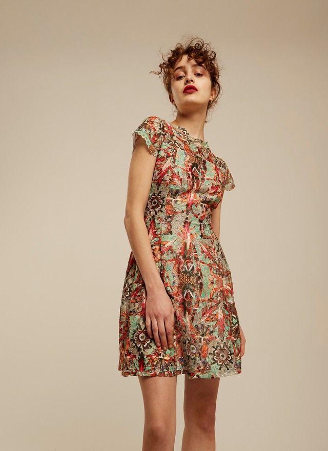 Vestido de blonda estampado - Vestidos | Adolfo Dominguez shop online