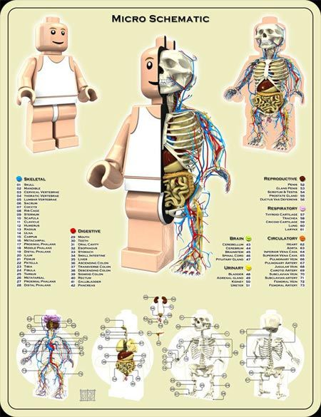 The Anatomy of a Lego Minifig Is as Fascinating as It Is Spooky