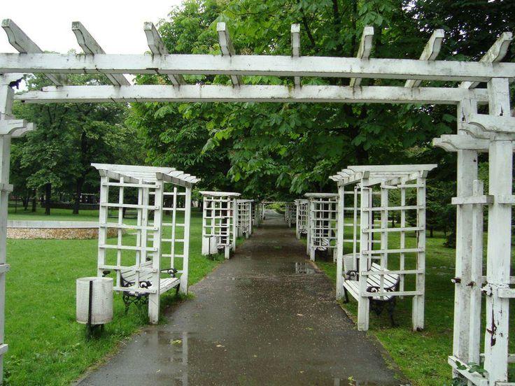 Autoritatile au aflat ca Parcul Poporului arata jalnic. N-au descoperit singuri, ci ajutati de un cetatean!