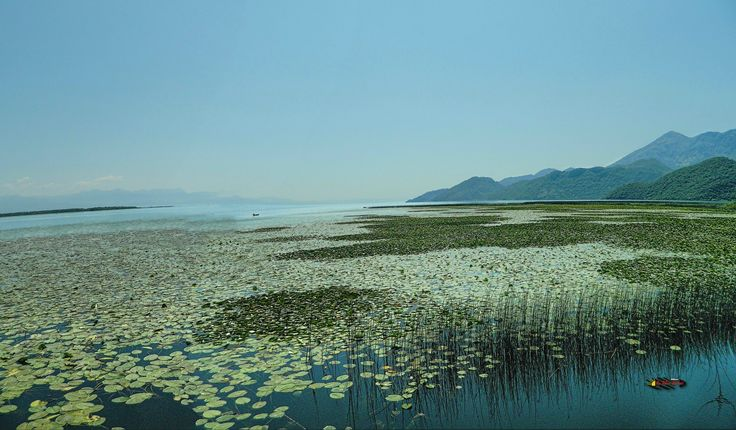 Lake Skadar, National Park and bird reserves in Europe, Montenegro, Nikon Coolpix L310, 4.5mm, 1/550s, ISO80, f/8.7, -0.3ev, panorama mode: segment 2, HDR-Art photography, 201607091057