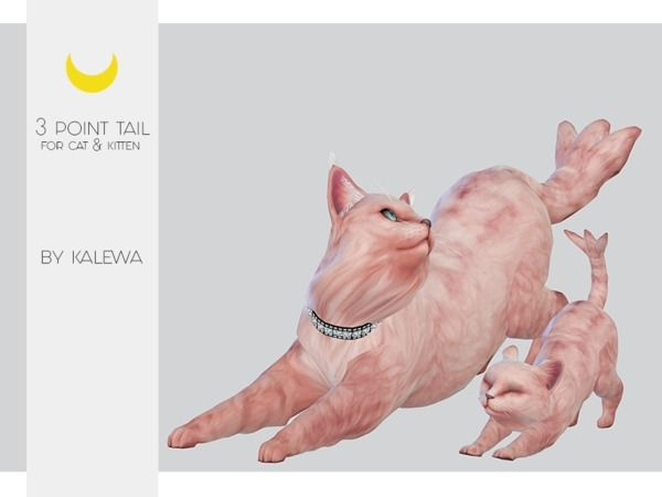 Kalewa A S Cat Kitten Three Point Tail Sims Pets Sims 4 Pets Sims