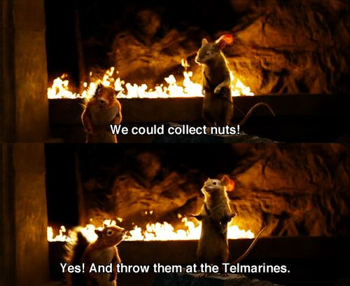 we could collect nuts yes and throw them at the telmarines - Google Search