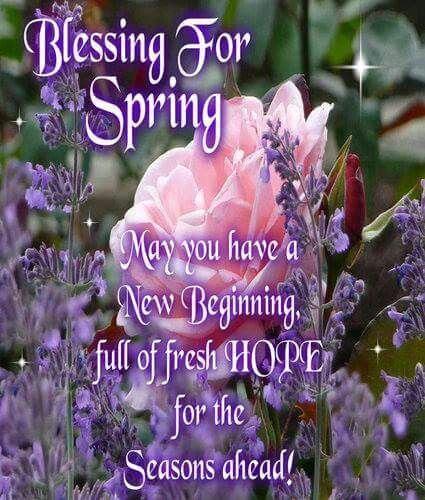 Image result for spring blessings images