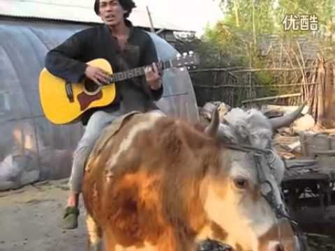 "Chinese man riding cow sings perfect rendition of Justin Bieber's ""Baby."" What else do you need to know?"