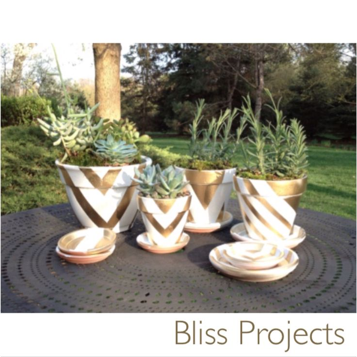 More gold geometrics. Extra Patterns and stripes create a focal point and an art piece. #blissprojects #terracotta #geometrics #lifeandcolour #herbs #potplants #kitchendecor #gardening #diy #gifts #flowers #flowerdecor #personalise #gold #stripes #arrows