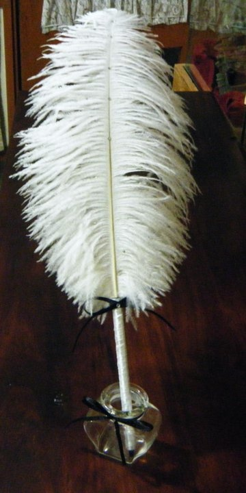 Ostrich feather quill(Pen)
