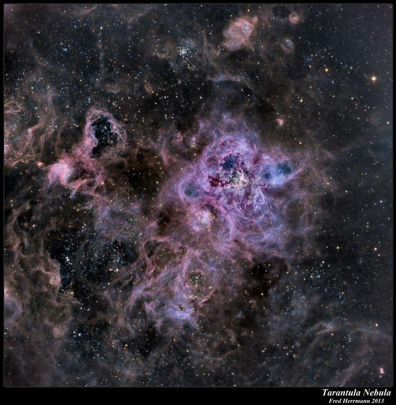 Tarantula Nebula by Fred Herrmann