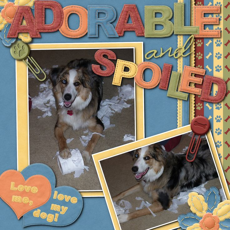 Dog gone it - Scrapbook.com