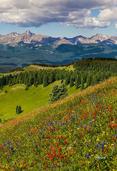 ~~Shrine Pass View Of The Mount Of The Holy Cross • Vail, Colorado • by Fred J Lord~~