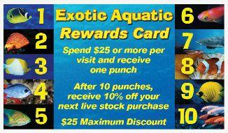 Exotic Aquatic Tips - Saltwater Fish Store | Tropical Fish Store | Marine Fish Store | Fish Tanks | Aquarium Supplies