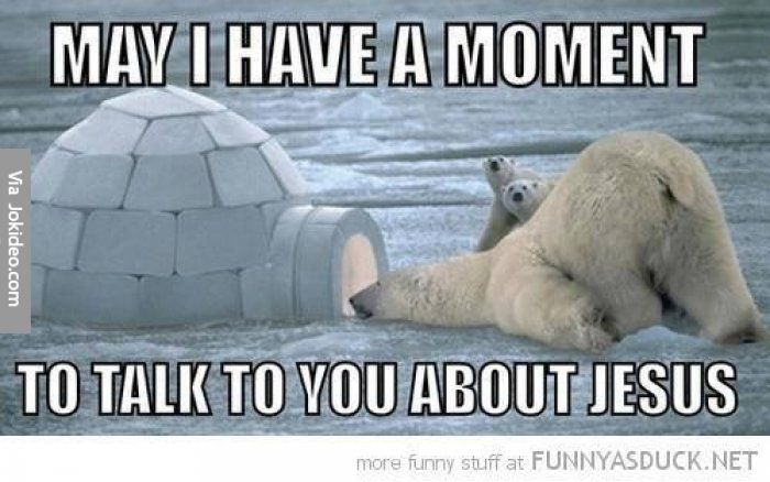 May I have a moment - polar bear meme - Jokes, Memes & Pictures