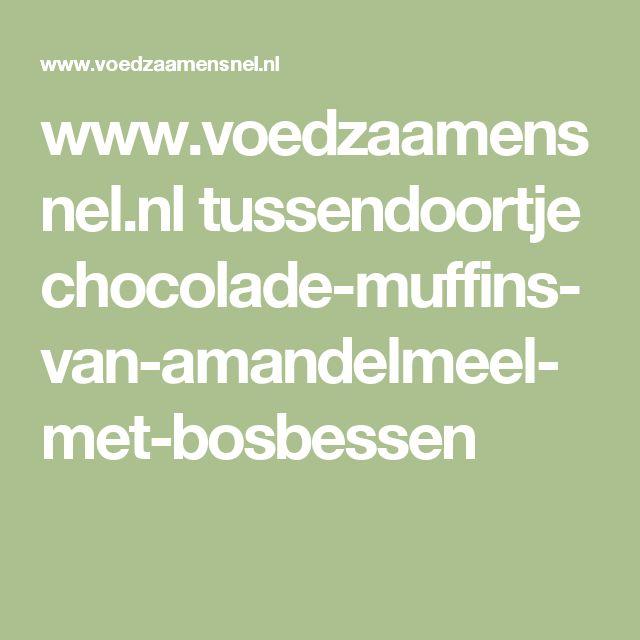 www.voedzaamensnel.nl tussendoortje chocolade-muffins-van-amandelmeel-met-bosbessen