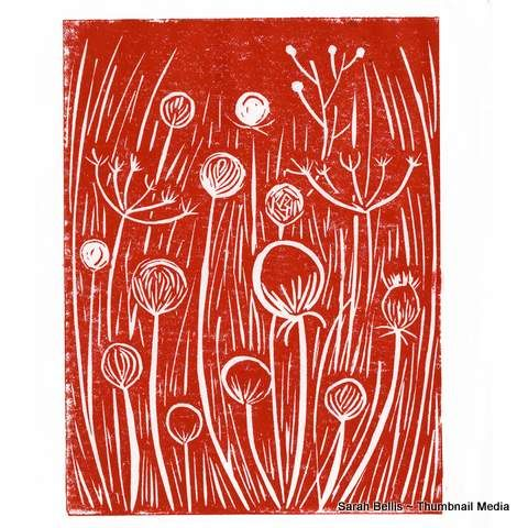 Red Thistle Sarah Bellis Designs www.thumbnailmedia.com