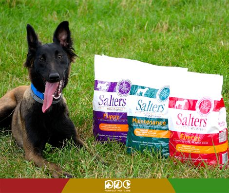 Weekend plăcut! http://www.perfectpetcare.ro/salters-maintenance.html
