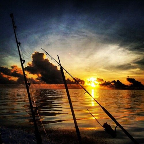 Early morning fishing trip