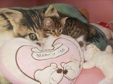 She´s so cute:)