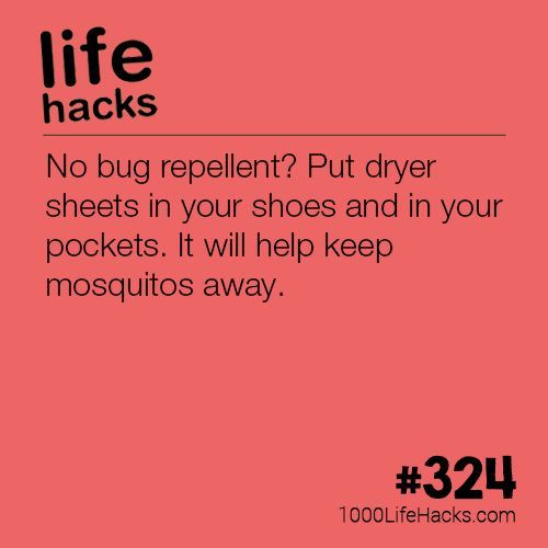 The post DIY Bug Repellent appeared first on 1000 Life Hacks.