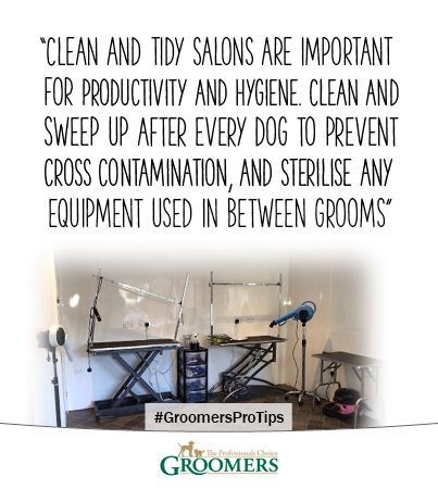 Clean and tidy salons
